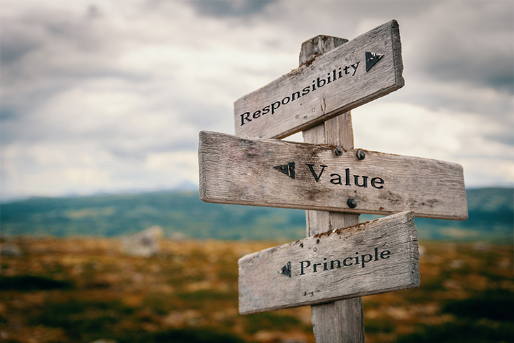 Quinnox Solutions - Our Values